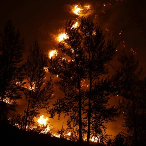 a tree is silhouetted by flames from wildfire above a home in Twisp, Washington.