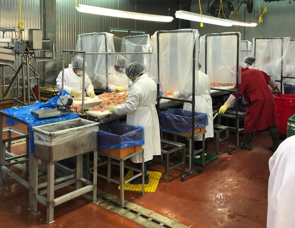 Workers process chicken at the Fieldale Farms plant in Hall County, Georgia. The food industry there relies heavily on immigrants whom Trump has attacked.