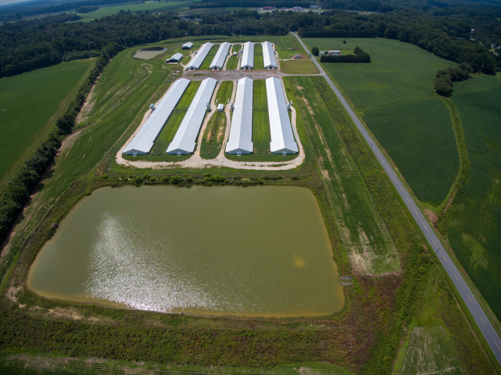 Aerial photo of a concentrated animal feeding operation near Denton, Maryland, permitted to hold nearly 300,000 chickens. Nearby residents worry about pollution.